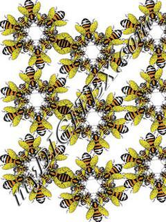 BEE NEW 1