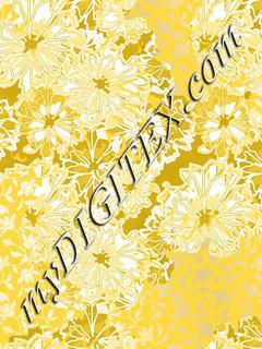 Glamour daisies