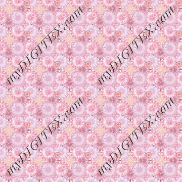 flowers 170604