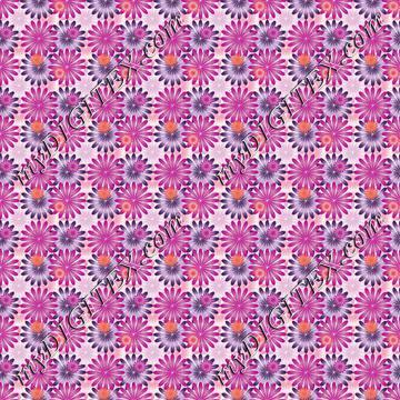 flowers C2 170604