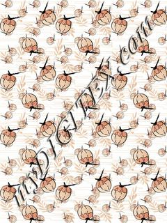 Coconut pattern C2 170422