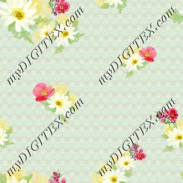 Daisy-primrose