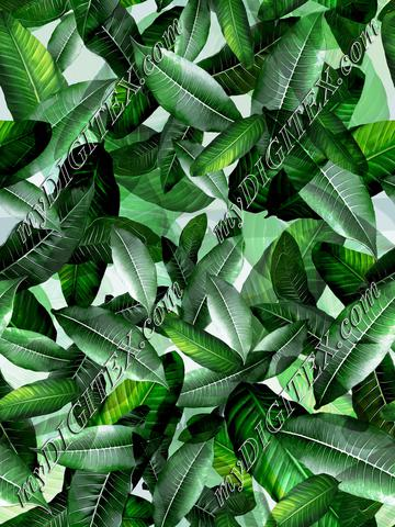 Banana Leaf Tropical Green
