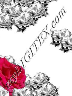 Floral01 C2 180109