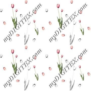 Floral02 C2 180109