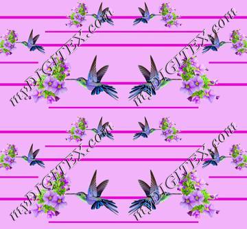 Hummingbird 11