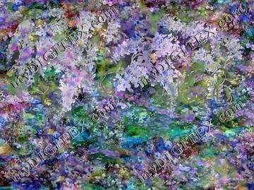 wisteria largest300