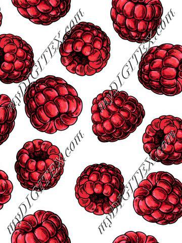 raspberry_recolor-02