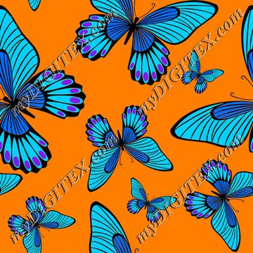 Blue butterflies on orange
