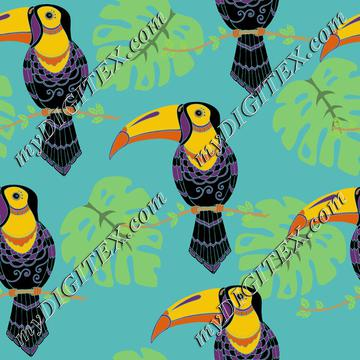 Toucans tropical birds