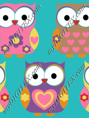 Cute. Funny owls