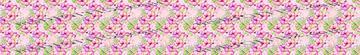 Hummingbird pink floral