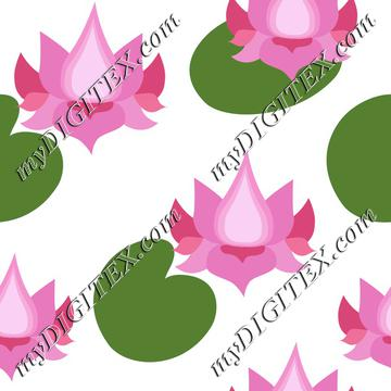 Pink lotusflowers lotuses
