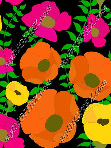 Colorful poppy summer flowers on black