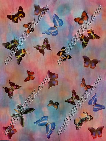 butterfly sunset png-2-1800222
