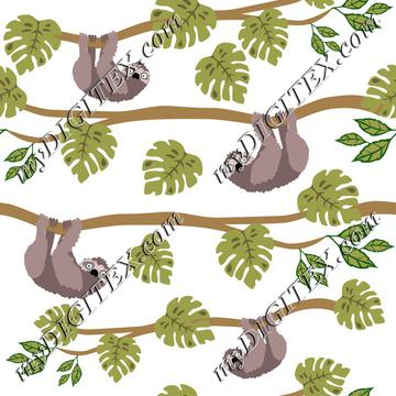 Sloths and Tropical Leaves, Cute Sloth, Tropical Animals