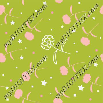 Baby Girl Floral C