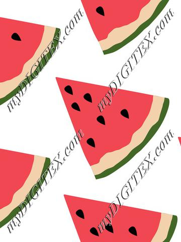 Watermelon on white summer froit