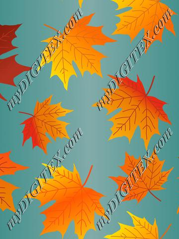 Autumn leaves,Fall Maple Leaves