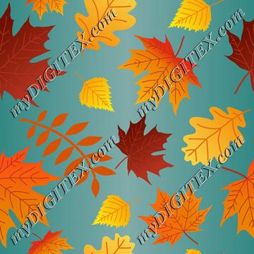 Autumn Leaves, colorful Fall Leaves