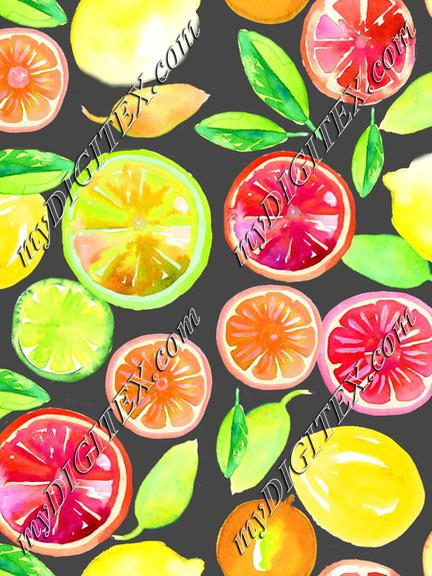 Citrus in Watercolor Gray BG