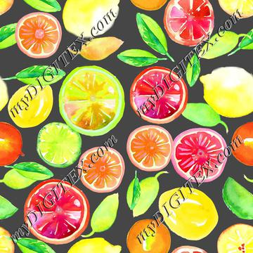 Citrus in Watercolor Main