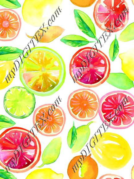 Citrus in Watercolor White BG