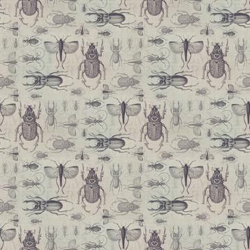 Vintage Beetle Small