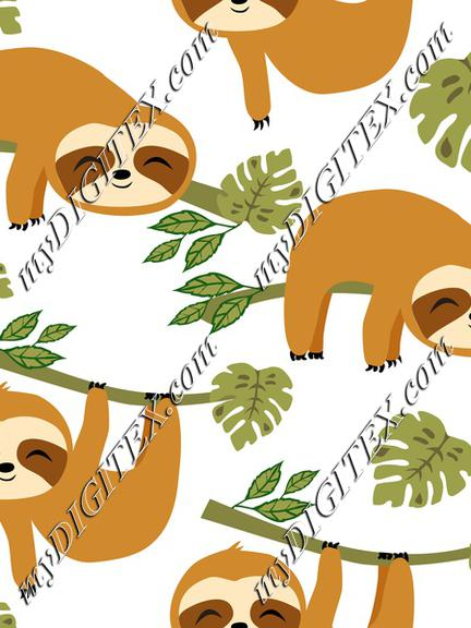 Cute Sloths in Jungle