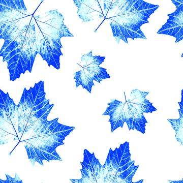 dueblue Maple leaves