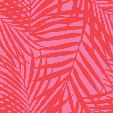 7473558_rfronds-orange-on-pink