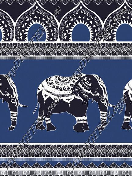 Ethnic elephants