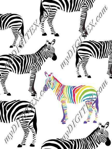 Zebras Black and White and Rainbow. Be Yourself!