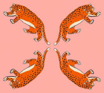 leopard salmon1