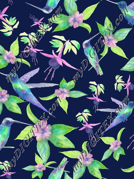 NK112hummingbird